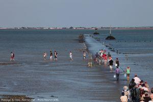 Passage du gois marée descendante noirmoutier